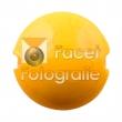 cim-201-marigold