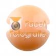 cim-704-peaches-and-cream