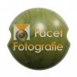 kugler-079-pea-green