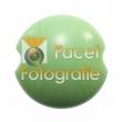 kugler-401-light-green