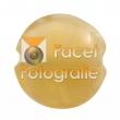 reichenbach-0701s-pearl-beige