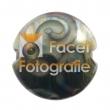reichenbach-5011-silver-brown-dark-a