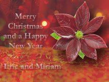 Kerst 2013 Nieuwjaar 2014